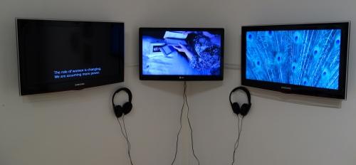 Artist: Lucia Hinojosa (installation view)